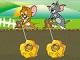 Tom ve Jerry Altın Avcısı