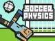 Fizik Futbol