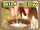 Süt Sağma