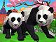 Panda Simülasyonu